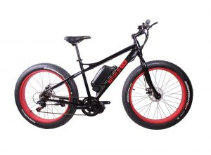 Martori SS 750 MD ElectricBicycle