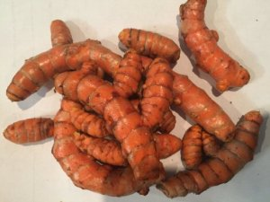 Turmeric Root - Whole Raw Organic Root - 1 Lb. Lots - Top Grade