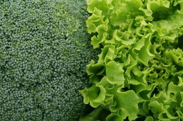 broccoli and kale next to each other