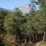 Toponimia de Orduña (III)