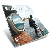 ISSUE #81