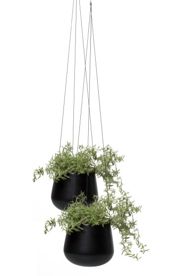The Hanging Planter. Style 140650