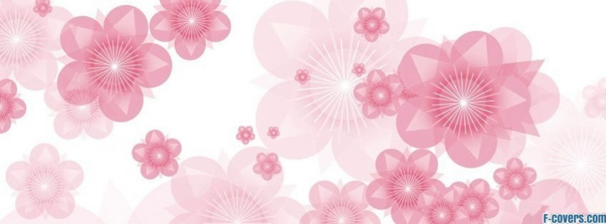 Flowers Pink Roses 3 Facebook Cover Timeline Photo Banner
