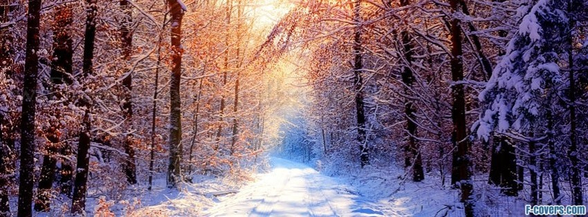 Winter Facebook Collage Cover