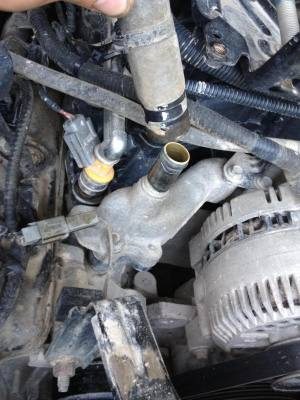 Changing thermostat on 54 2V  Ford F150 Forum