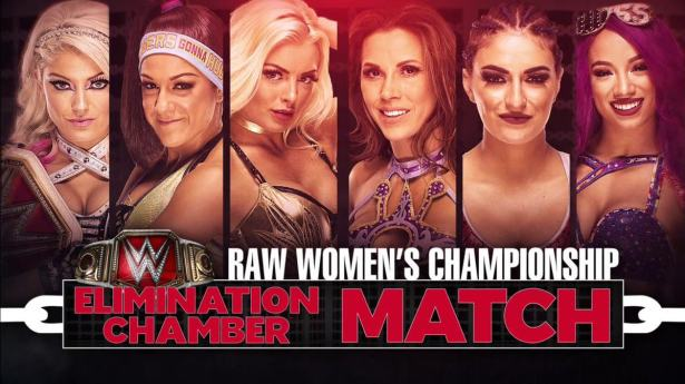 Image result for women's elimination chamber