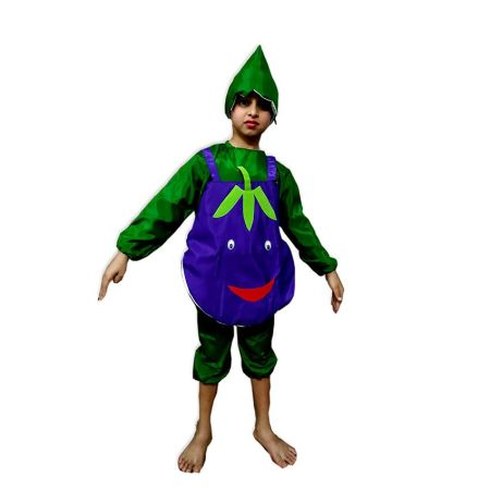 Kids Brinjal Costume Fancy Dress on Rent