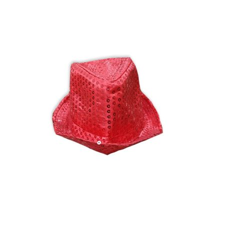Kids Red Hat Accessories and Props on Rent