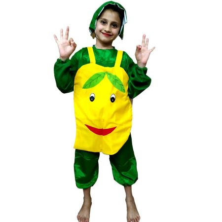 Kids Mango Fancy Dress Costume on Rent.