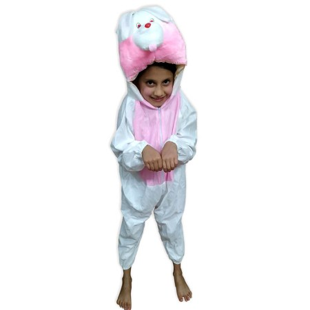 Kids Rabit Fancy Dress Costume on Rent.