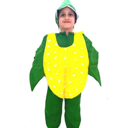 Corn Costume on Rent