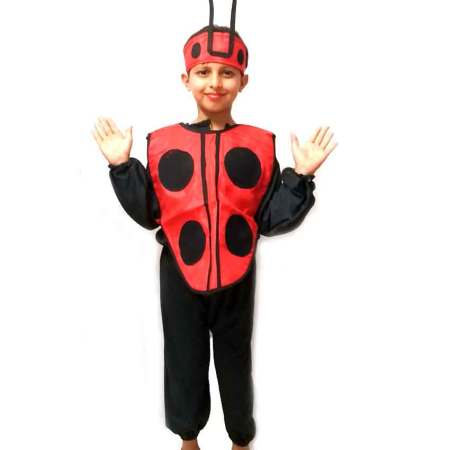 Lady Bird Boy Costume on Rent
