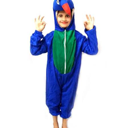 Peacock Costume on Rent