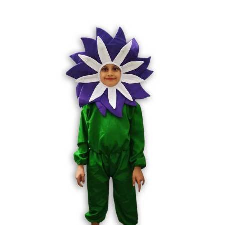 Hire Purple Flower Costume