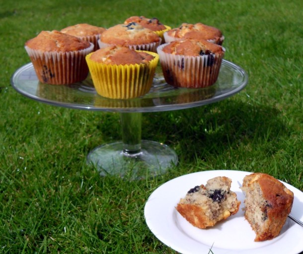 Blueberry, Banana & White Chocolate Muffins on a cake dish on a lawn.