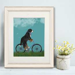 Bernese on Bicycle - Sky