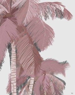Boho Beach Dusky Palm 1