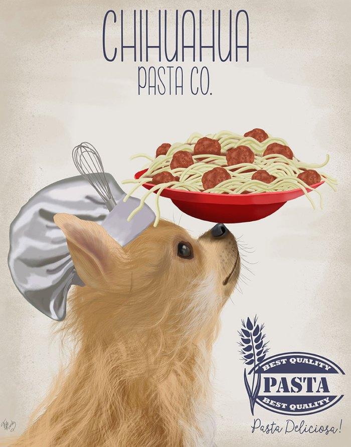 Chihuahua Long Haired Pasta Cream