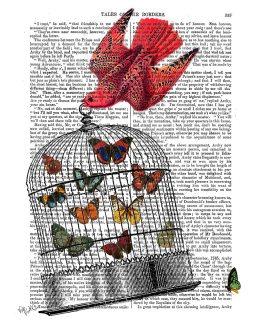 Flying Birdcage