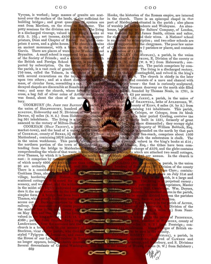 Military Rabbit in Red