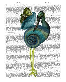 Snail Bird