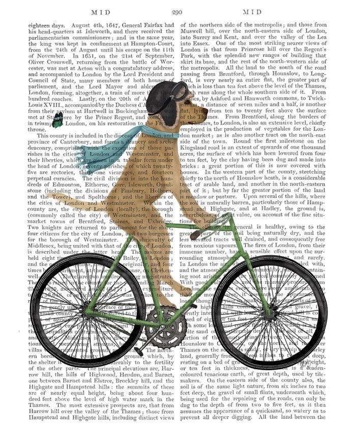 Yellow Labrador in Flying Helmet on Bicycle
