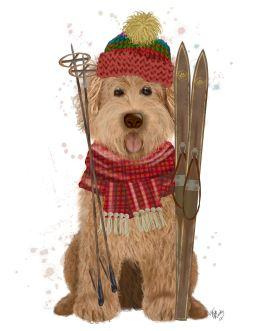 Goldendoodle Ski Dog