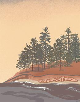 Pine Grove 1 Art Print