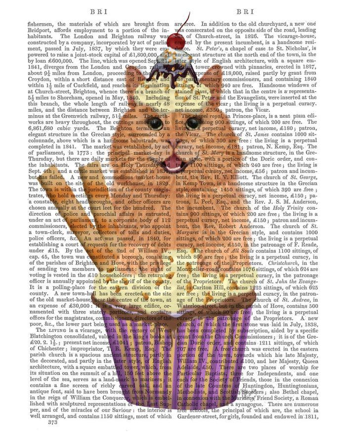 Ginger Cat Cupcake