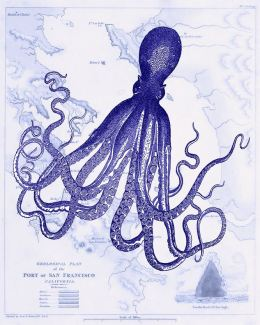 Blue Octopus 1 on Nautical Map