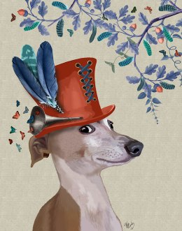 Greyhound Milliners Dog