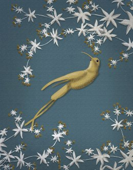 Golden Hummingbird 2