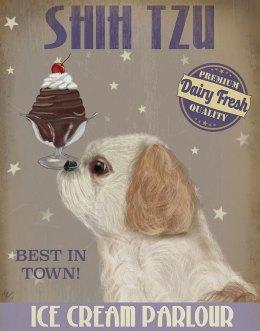 Shih Tzu Ice Cream