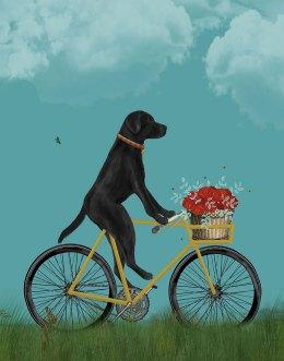 Labrador Black on Bicycle - Sky