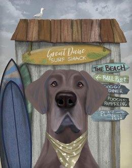 Great Dane Surf Shack