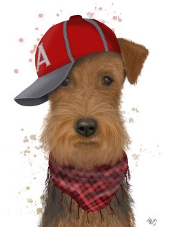 Airedale and Baseball Cap