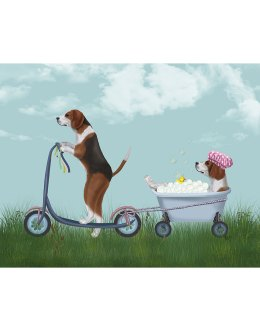 Beagle Scooter
