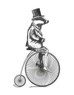 Badger on Penny Farthing