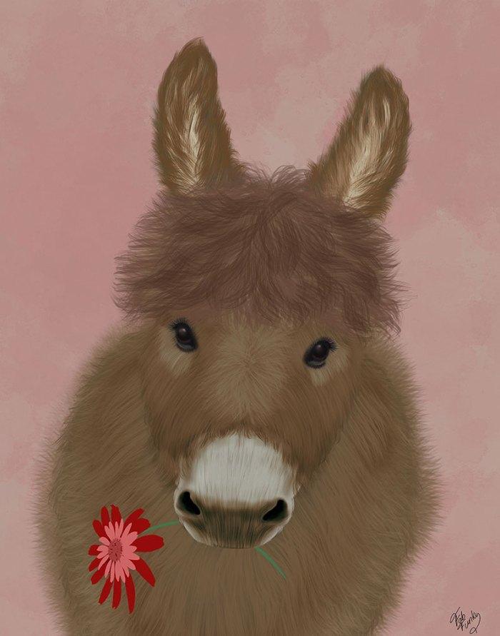 Donkey Red Flower