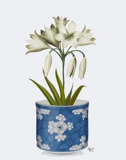 Chinoiserie Amaryllis White