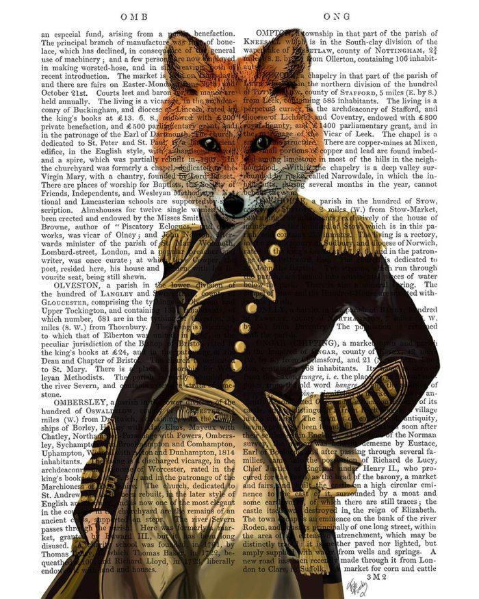 Admiral Fox