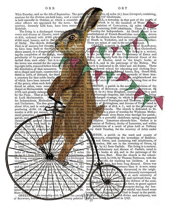 Rabbit On Penny Farthing