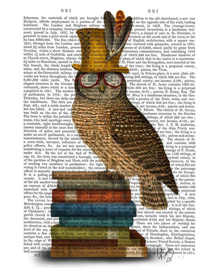 Owl On Books