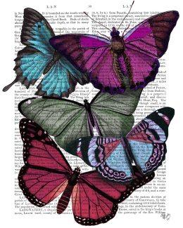 Big Bold Butterflies 3