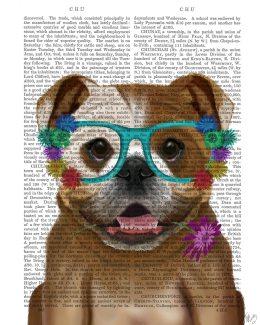 English Bulldog and Flower Glasses