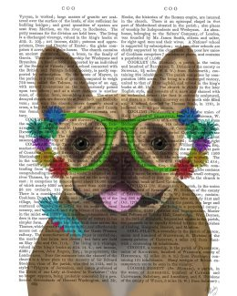 French Bulldog and Flower Glasses