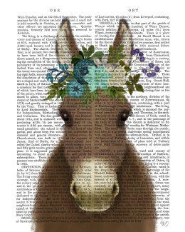 Donkey Bohemian 3