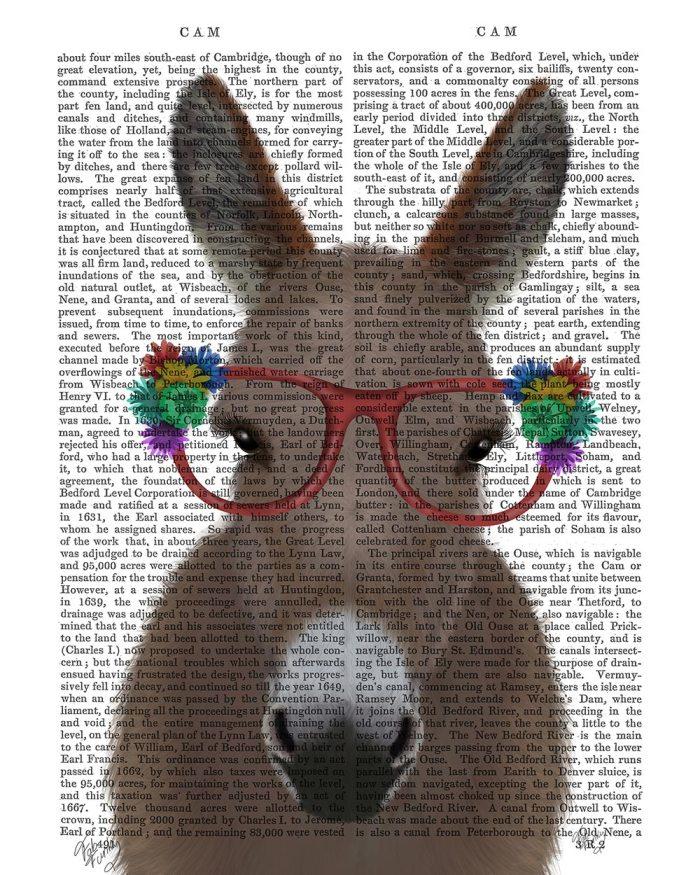 Donkey Red Flower Glasses
