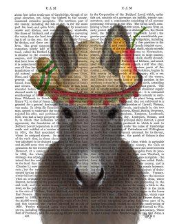 Donkey Sombrero