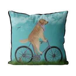 Golden Retriever on Bicycle - Sky